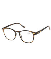 See Clear 8038 - Minusbrille (NYHET)